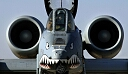 a10-with-nose-art.jpg